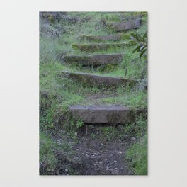 Nature Print Canvas Print