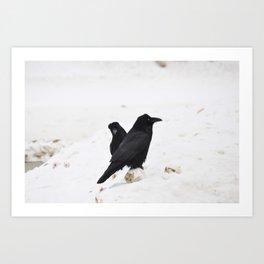 Ravens on the Coquihalla Highway Art Print
