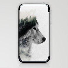 Wolf Stare iPhone & iPod Skin