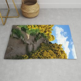Edinburgh Scotland Sunflower Path | United Kingdom Landscape Rug