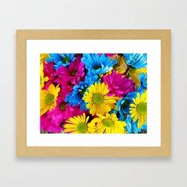 Daisy Flowers, Petals, Blossoms - Blue Yellow Pink Framed Art Print