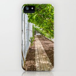 The Lost Gardens of Heligan - The Peach House iPhone Case
