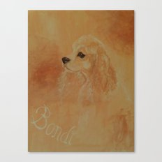 American Cocker Spaniel Canvas Print