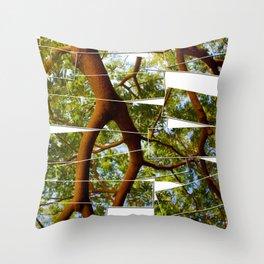 Origins Throw Pillow