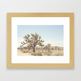 Pale Desert Framed Art Print