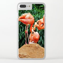Newly Hatched Chick Clear iPhone Case