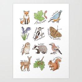 British Woodland Wildlife Art Print