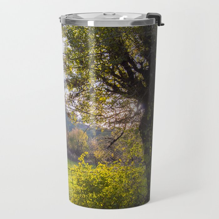 Forest, sunset, art photography at the bulgarian village Lisicite Travel Mug