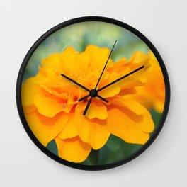 Sunny Delight Wall Clock
