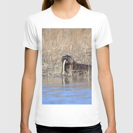 Watercolor Otter 09, Janes Island, Maryland T-shirt