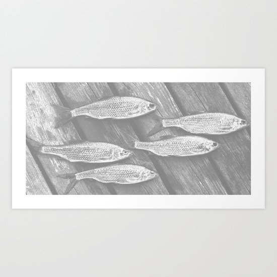 Five Fish  Art Print