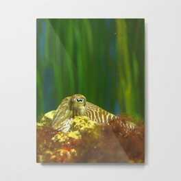 A Little Cephalopod Told Me... Metal Print