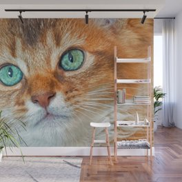 EYE CAT-CHING Wall Mural