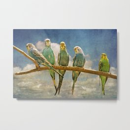 Parakeets perched on a branch againts a cloudy blue sky Metal Print