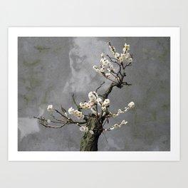 Blooming  bonsai Art Print
