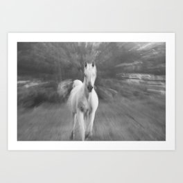 Horse Cantering Art Print