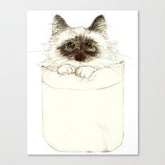 Puss in Pocket (B) Canvas Print