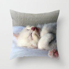 Sleepy Kitten Throw Pillow