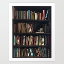 The Bookshelf in the Library, portrait, vibrant Art Print