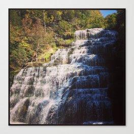 Hector Falls, NY Canvas Print