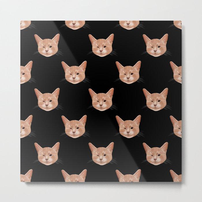 Kiki, the pretty blind cat Metal Print