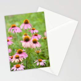 Pink Echinacea Wildflower Stationery Cards