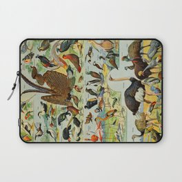 Colourful Birds Vintage Scientific Illustration French Language Encyclopedia Lithographs Educational Laptop Sleeve