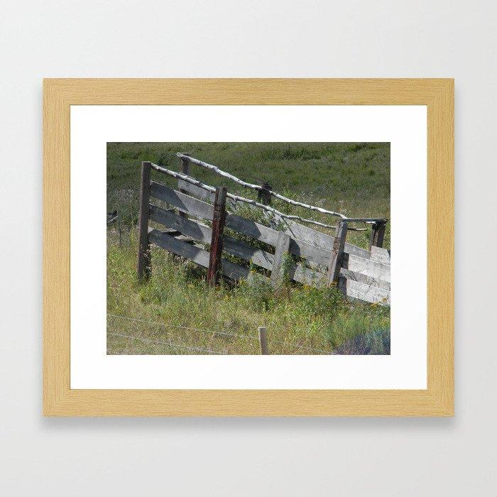 Cattle Chute Framed Art Print