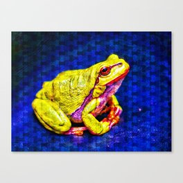 The InFocus Happy Frog Collection I Canvas Print
