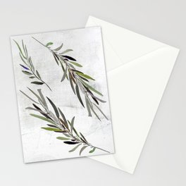 Eucalyptus Leaves White Stationery Cards