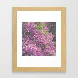 field flower 3 Framed Art Print
