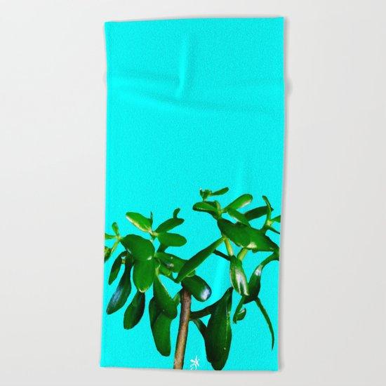 Good Luck Succulent Tree on Sky Blue Beach Towel