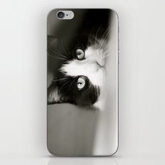 Let Me Out iPhone & iPod Skin