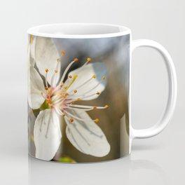 Flowering Plum Coffee Mug