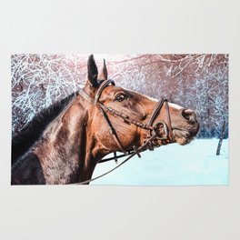 Beautiful horse head isolated on winter background Rug