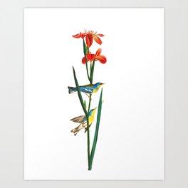 Bird & Red Flowers Art Print