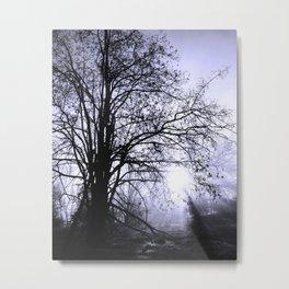 American River Trail Metal Print