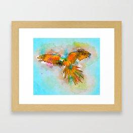 High as a Macaw Framed Art Print