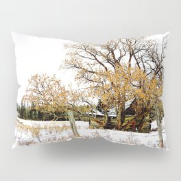 Left Behind Pillow Sham