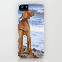 Vizsla iPhone Case