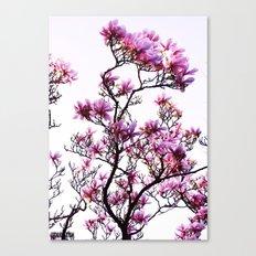 Pink Flower Tree Canvas Print
