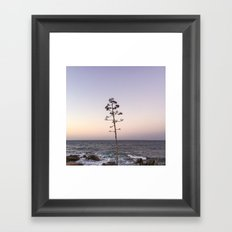 portrait of a tree no.1  Framed Art Print