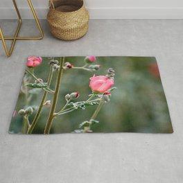 Pink Desert Globemallow Flowers Rug