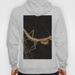 Praying Mantis Isolated on Black Hoody