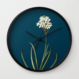 Vintage Arabian Starflower Botanical Illustration on Teal Wall Clock