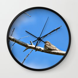 Common NightHawk Wall Clock