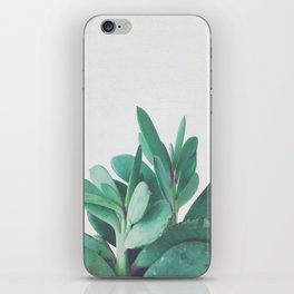 Crassula iPhone Skin