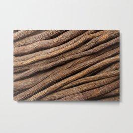 Licorice root Metal Print