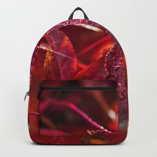 Indian summer 5 Backpack