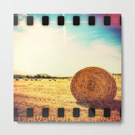 hay bale in a wheat field Metal Print